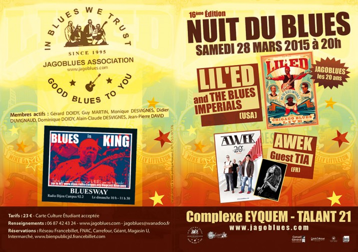 Jagoblues-Nuit du blues 2015
