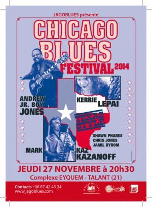 CHICAGO BLUES FESTIVAL 2014
