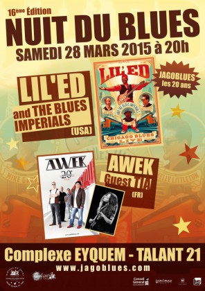 NUIT DU BLUES 2015